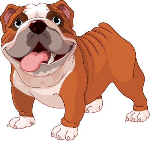 Vector chú chó Bulldog trên nền trắng