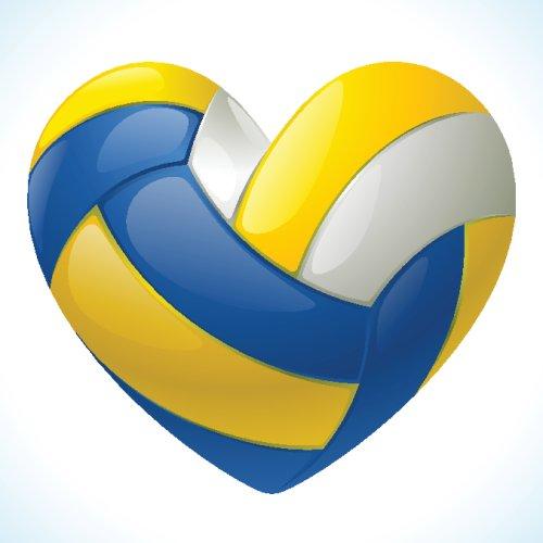Vector quả bóng chuyền có hình trái tim
