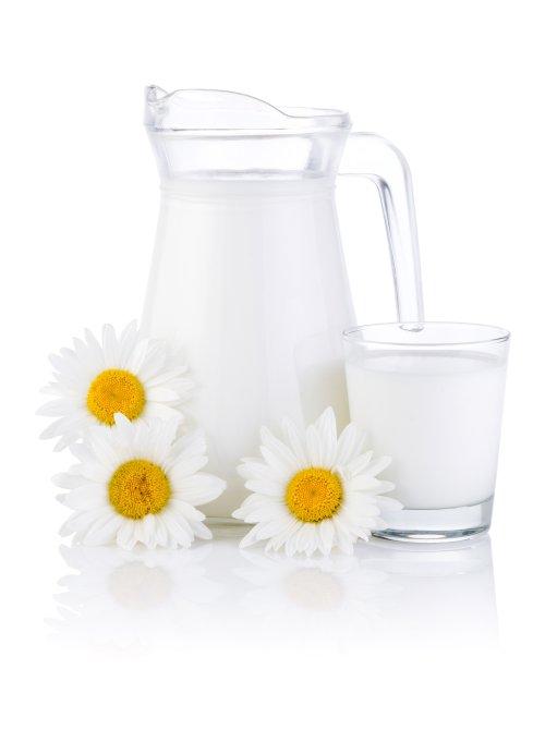 Ảnh chụp sữa tươi trong ly thủy tinh và ba hoa cúc trên nền trắng