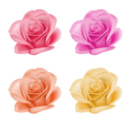 Vector Bộ hoa hồng với màu sắc khác nhau