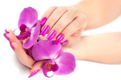 Ảnh chụp bàn tay nữ với hoa lan