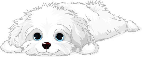 Vector chú chó con Havanese trắng dễ thương đang nằm