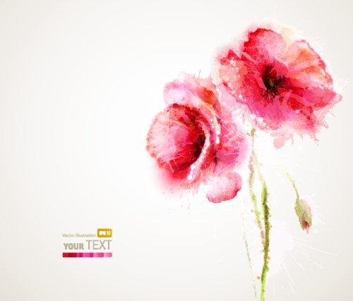 Vector Hai hoa cúc đỏ