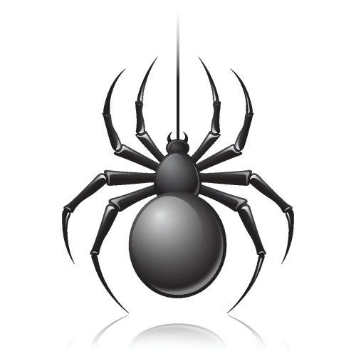 Vector côn trùng đen trên nền màu trắng