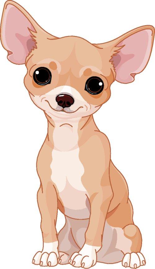 Vector chú chó dễ thương Chihuahua