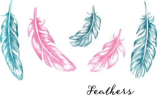 Vector vẽ tay lông màu xanh và màu hồng