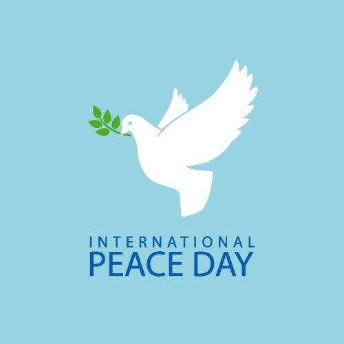 Vector chim bồ câu với nhánh ô liu biểu tượng hòa bình