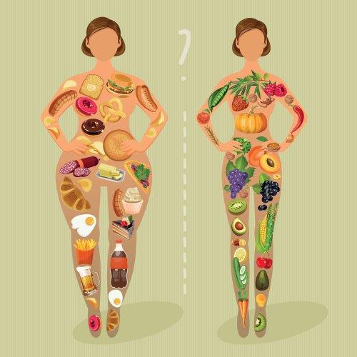 Vector lối sống, chế độ ăn uống lành mạnh và thói quen hàng ngày.