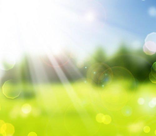 Hình ảnh về cảnh đẹp thiên nhiên Spring Bokeh.Blurred Sunny background