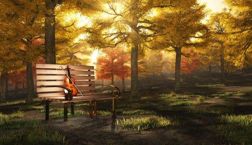Ảnh minh hoạ đàn Violin trong công viên autumnal