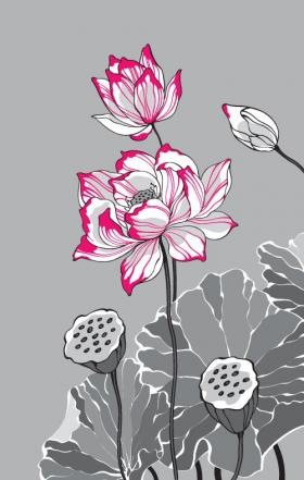 Vector hai hoa sen trắng màu đỏ trên nền màu xám