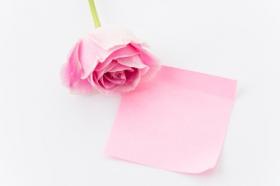 Ảnh giấy ghi chú màu hồng với hoa hồng trên nền trắng