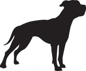 Vector hình bóng chó mặt xệ Mỹ