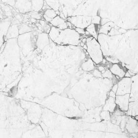 Ảnh nền tảng đá cẩm thạch trắng (quét độ phân giải cao)